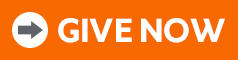 - Give Now Button 2020 new orange