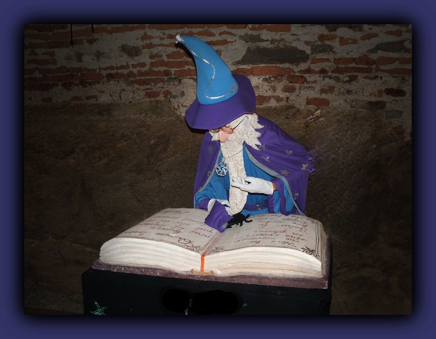 photo of a wizard reading book