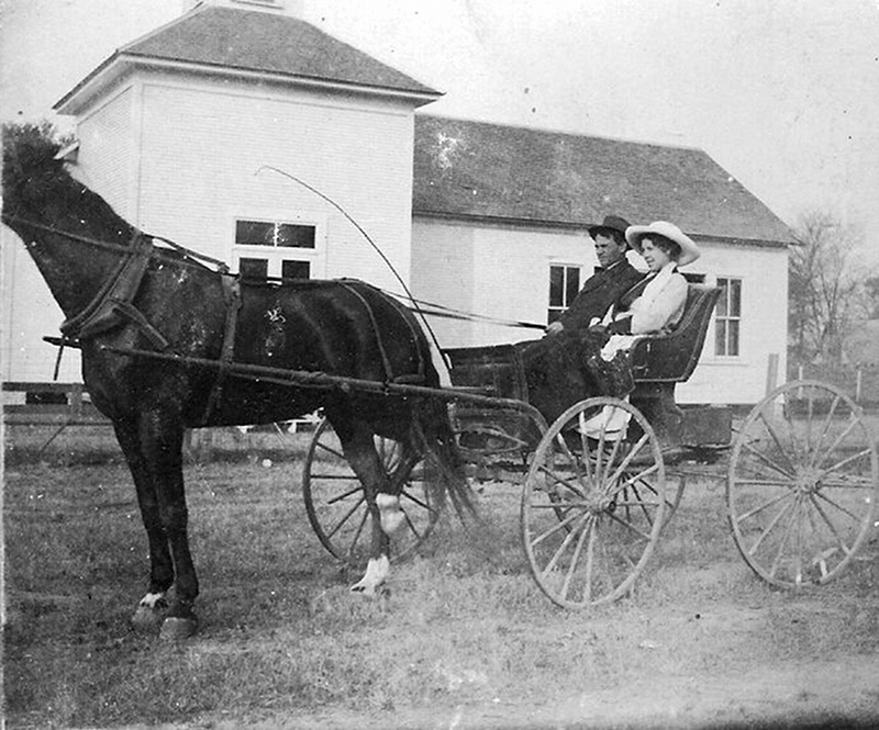 photo of horse and buggy