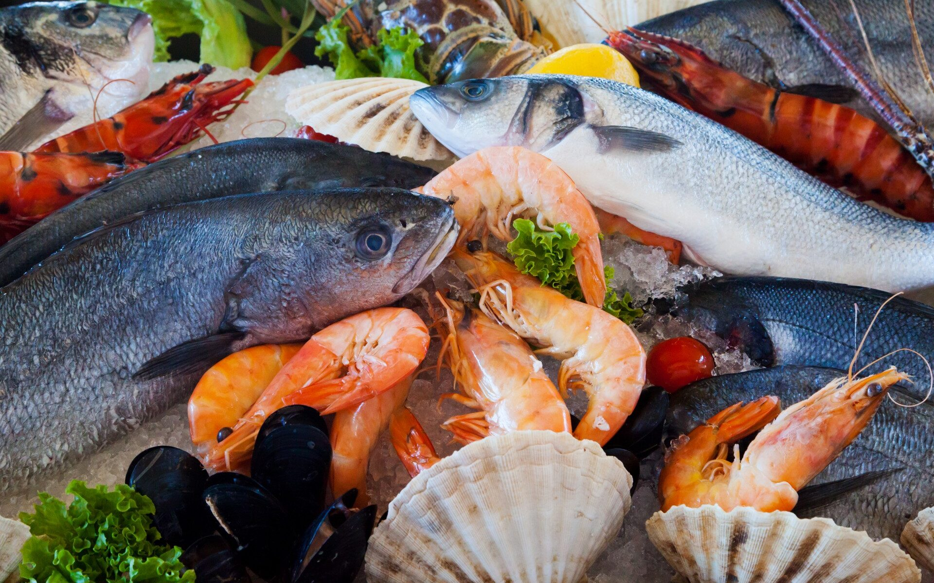 fresh seafood photo